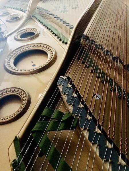 "Bechstein Mdl, 225 (7'4"") Semi-Concert Grand"